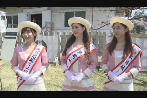 ミス桜2018インタ