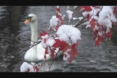 初積雪2018