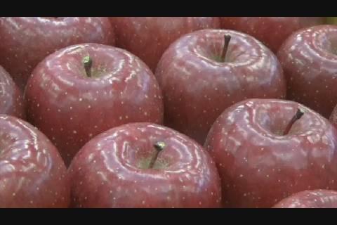 りんご品評会2018