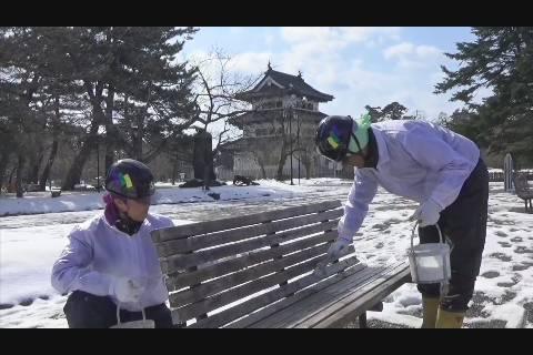 弘前公園内ベンチ塗装
