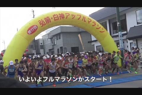アップルマラソン