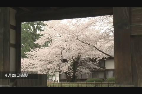 弘前公園二の丸三の丸篇