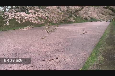 弘前公園桜外濠篇